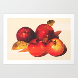 Apple Season Art Print