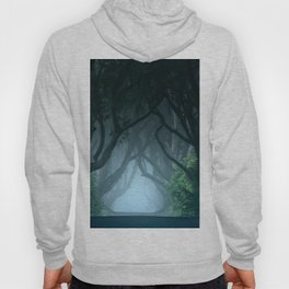 Cold foggy morning in Dark Hedges Hoody