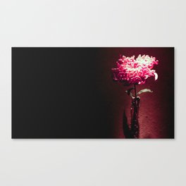 All I Want Is You Canvas Print