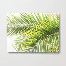 Palm leaves tropical illustration Metal Print