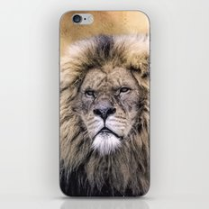 African Pride iPhone & iPod Skin