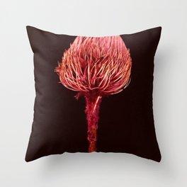 Pink Native Banksia Throw Pillow