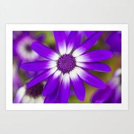 Macro Flora Art Print