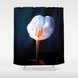 The Inner Light Shower Curtain