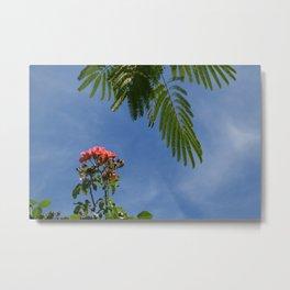 Maui Sky Interrupted Metal Print