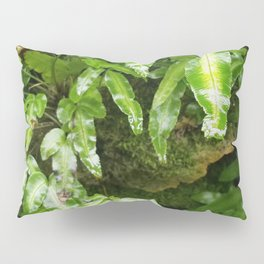 The Fernery Pillow Sham