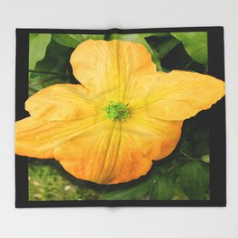 Spring Bloom Throw Blanket
