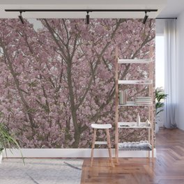 spring beauty Wall Mural