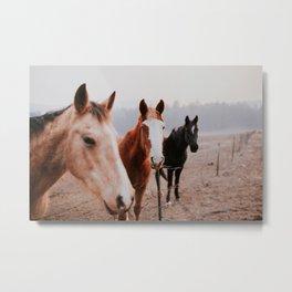Three Horses Metal Print