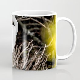 A great white egret is perched in some brush just north of the Shuttle Landing Facility at NASAs Ken Coffee Mug