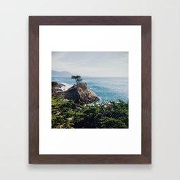 The Lone Cypress Framed Art Print
