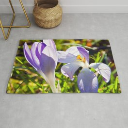 The Magic of Spring Rug