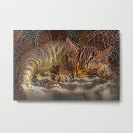 Tabby Kitten Cat Napping Metal Print