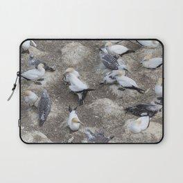 Gannet Colony Laptop Sleeve
