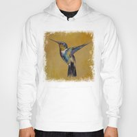 hummingbird Hoodies featuring Hummingbird by Michael Creese
