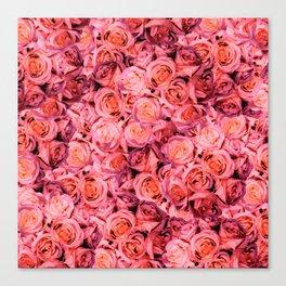 RosePink Canvas Print