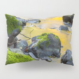 Grizzly Creek In The Fall Pillow Sham