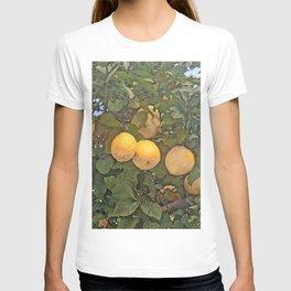 Lemon tree full of lemons T-shirt