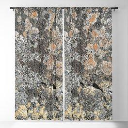 Lichen on the granite rock Blackout Curtain