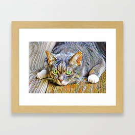 The TABBY II from our FUNK YOUR FELINE line Framed Art Print
