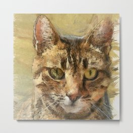 Tabby Cat Metal Print