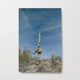 Wacky Cactus Metal Print