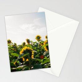 Sunflower Fields, 2014 Stationery Cards