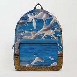 Wedge Wash Backpack