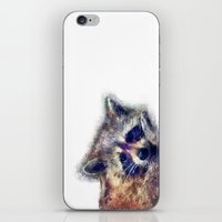 raccoon iPhone & iPod Skins featuring Raccoon  by jbjart