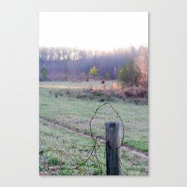 'Murica, GA Canvas Print