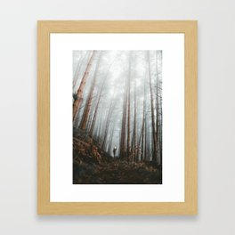 The Bewitching Woods Framed Art Print