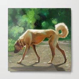 Remus the Dog Metal Print