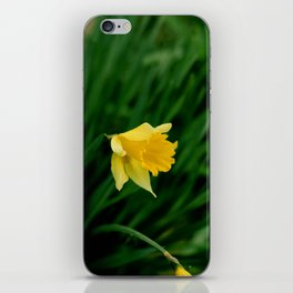 YOU ARE VERY BRIGHT AND BOLD iPhone Skin