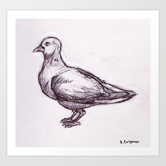 Pigeon Study Art Print