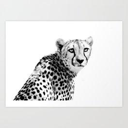Cheetah I Art Print