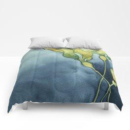 Bull Kelp Watercolor Comforters