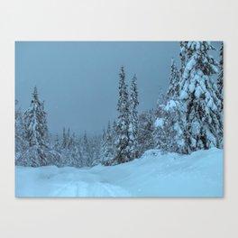 winter in idre fjall sweden Canvas Print
