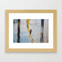 Free Little Bird Framed Art Print