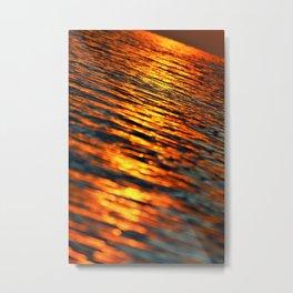 Sunlit Reflections Metal Print