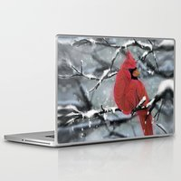 cardinal Laptop & iPad Skins featuring Cardinal by Ben Geiger