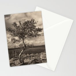 One tree in the mountains Stationery Cards