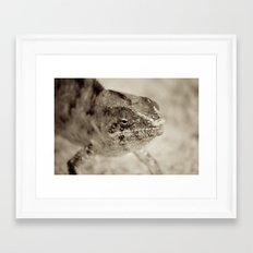 Surprise Me Framed Art Print