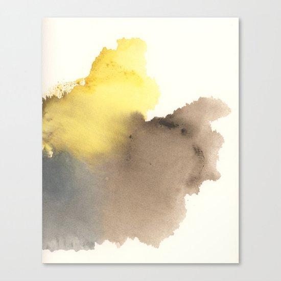 Litmus No. 11-1 Canvas Print