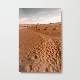 DESERT MIGRATION Metal Print