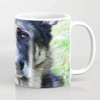 german shepherd Mugs featuring GERMAN SHEPHERD PHOTOGRAPH by Allyson Johnson