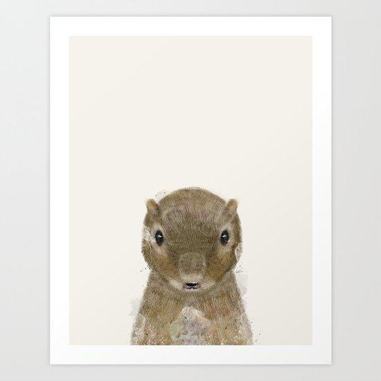 little squirrel Art Print
