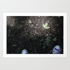 Converse and the leaf Art Print