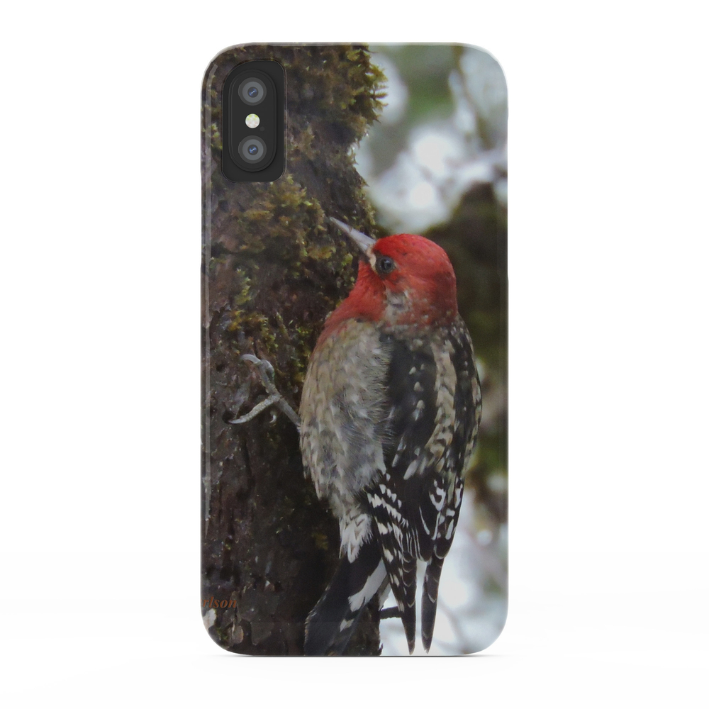Red-Breasted Sapsucker in Christmas Snow Phone Case by rscarlson (PCS4016012) photo