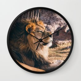 PHOTOGRAPHY OF LION LYING ON GRASS BEAR ROCK IN THE MORNING Wall Clock