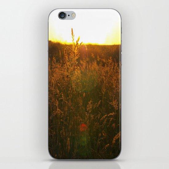 Warm iPhone & iPod Skin